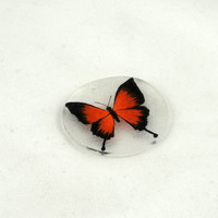 Orange Butterfly Shrinky Dinks Shrink Plastic by theotherstacey