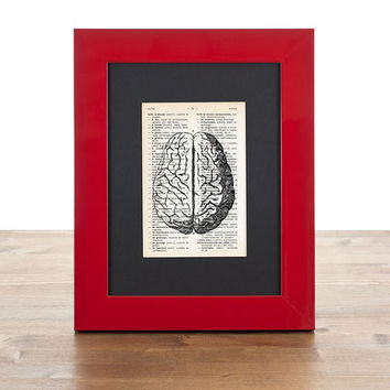 Anatomical human brain tiny dictionary print - Anatomy collection- 4x6 inches on Upcycled vintage dictionary page - only by NATURA PICTA