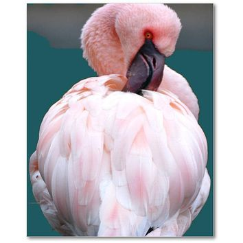 Pink Flamingo Canvas Art Print, Premium Canvas Gallery Wrap, Canvas Wall Art