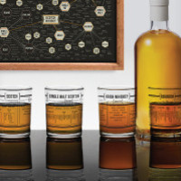 Individual Whiskey Taxonomy Glasses