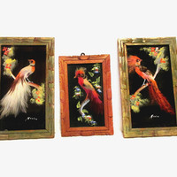 3 Vintage Mexican Wood Framed Feather Art Bird Painting Wall Hangings