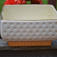 Vintage Cream with 23k Gold Accent Planter