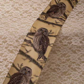 "Owl on Branch Ribbon, 2 1/2"" Wide, Wired Edge, Baskets, Bows, Wreaths, Home Decor, Ribbon Decorations, 3 YARDS"