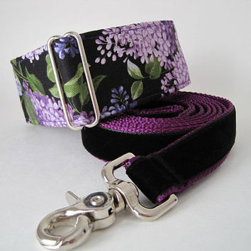 Martingale Collar and Leash, Purple Martingale Collar, Purple Velvet Leash, Greyhound Martingale Collar, Paisley Dog Collar and Leash