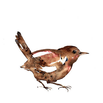 Bird Watercolor Animal Painting Art Wren aquarelle giclee A4 print Woodland birds illustration artwork.