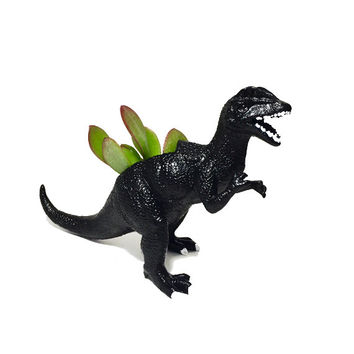 Up-cycled Black Dilophosaurus Dinosaur Planter