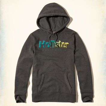 Guys Printed Logo Graphic Hoodie | Guys Tops | HollisterCo.com
