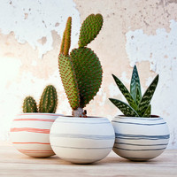 colorful porcelain planter (black/ dark blue stripes). Ceramic planter for, cactus, succulent or air plant. Crafted by Wapa Studio.