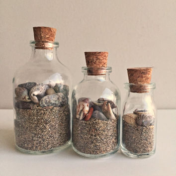 beach in a bottle beach theme glass bottles seashellssand beach decor coastal decor - Ocean Decor
