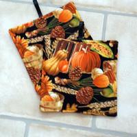 Potholders, Kitchen, hot pads, handmade, Vegetables, set of 2, pumpkins, gourds
