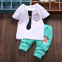 Newborn-Baby Summer 2 Piece Shirt-Pant Set