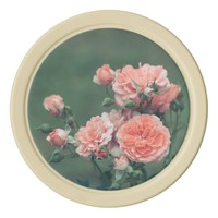 Beautiful pink roses on a natural green background poker chip set
