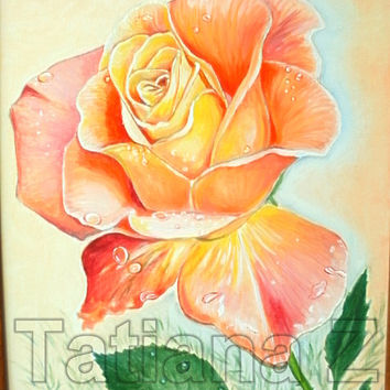 """Cream Rose original oil painting on stretched canvas 15,75""""-19,68"""" 40 by 50 cm  beautiful flower"""