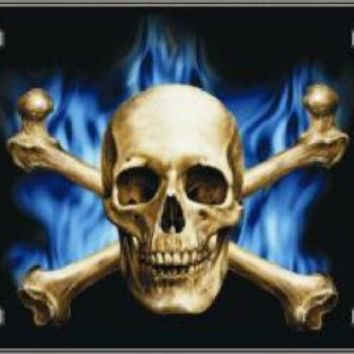 Skull Blue Flame Decorative Sign Tag License Plate