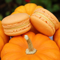 Pumpkin Pie French Macaron - Halloween Thanksgiving Christmas Cookies Macarons
