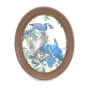 Vintage Burwood Oval Framed Blue Jay Lithograph, Wall Hanging, Art, Home Office Room Bird Decor, Nature Animals, Made in USA, Gift Idea