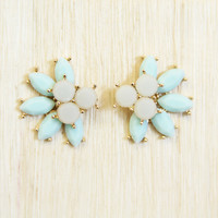 Pale Mint Tail feather Earrings