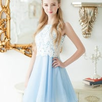 Blue Sleeveless Crochet Lace Embroidered Chiffon A-Line Mini Skater Dress