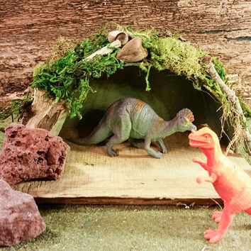 DIY Dinosaur Cave Kit, Fairy Garden Supplies, Fairy Kits, Fairy House Kit, Miniature Garden Supplies, Terrarium Kit, Miniature Garden Items,