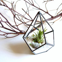 Small Geometric Terrarium Pod, Air Plant Glass Terrarium, Glass Planter