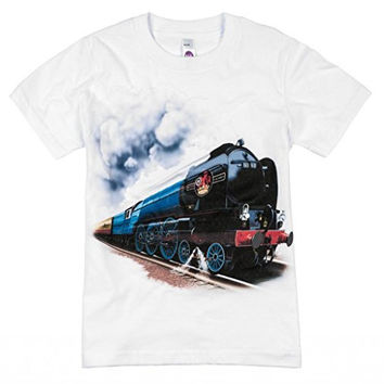 Shirts That Go Little Boys' British Railroad Train T-Shirt