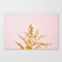 Airy - Nature Photography Canvas Print by Lauren Hummert Photography