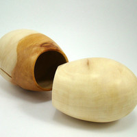 Mr. and Mrs. Sycamore Cocoon