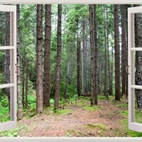"Removable Wall Decals - Huge Vinyl Mural - 3D Window Stickers - Large Nature Poster 33.5"" X 45"" - Wall Art Home Decor - New Wallpapers for Walls - Mural Wall Art - Forest Wall Decals"