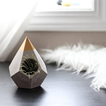 DIP TEARDROP Concrete Planter