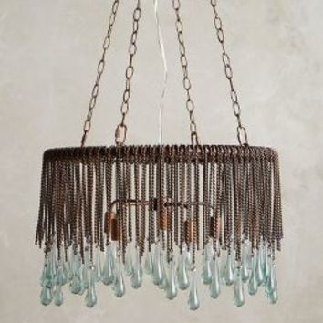 Tallis Teardrop Chandelier by Anthropologie in Bronze Size: One Size Lighting