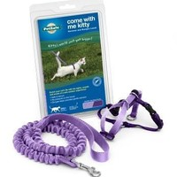 Kitty Harness & Bungee Lead Purple - Small