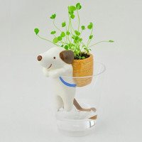 Mini Self Watering Flowerpot