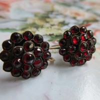 Antique Bohemian Garnet Earrings with 10K Screw Back Findings