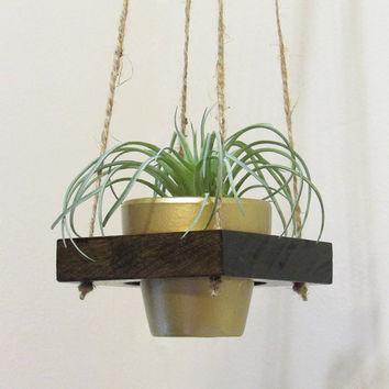 Air Plant Holder, Hanging Planter, Succulent Pot, Modern Planter, Succulent Planter, Indoor Planter, Wood Planter, Terracotta Pot, Gold