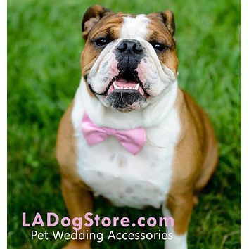 Pink Dog Bow Tie Collar, Polka dots, pink wedding ideas