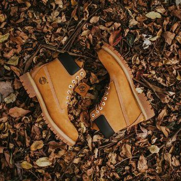 DCCK4VQ Timberland 6 in Premium Boot (Wheat)