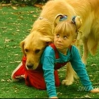 comet from full house now - Google Search