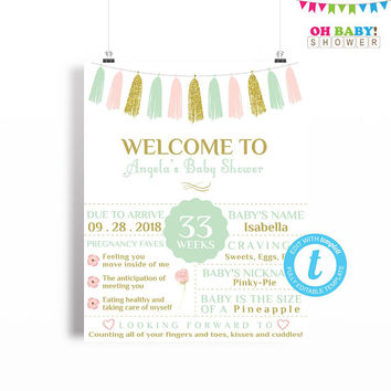 Baby Shower Welcome Sign, Pink Mint Gold Baby Shower Poster Chalkboard Sign Template, Girl Baby Shower, Printable Sign, 16x20 Digital TASPMG