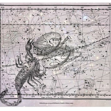 Scorpio, Libra, Constellation, Astrology, Astronomy, Metallic Print
