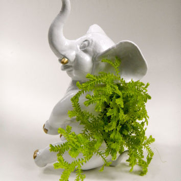 "White & Gold Elephant Planter - 2"" Potted Moss Plant Included - Modern Mini Hand Painted Plant Centerpiece"
