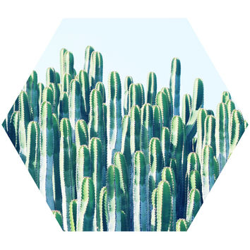 Cactus II Hex Wall Decal