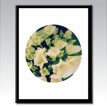 Botanical Wall Art, Flower Wall Art, Flower Photography, Nature Photography,White Wall Art, Wall Art, Poster Print, Botanical Photograph