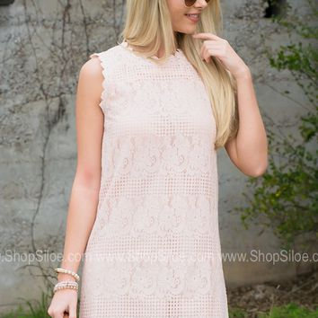 Spring Pink Lace Dress