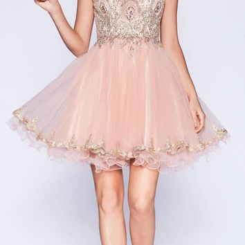 Bateau Neck Blush Embroidered Homecoming Short Dress Tulle
