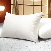 Set of 2 - Queen Size White Goose Feather and Goose Down Pillows - Exclusively by Blowout Bedding RN# 142035