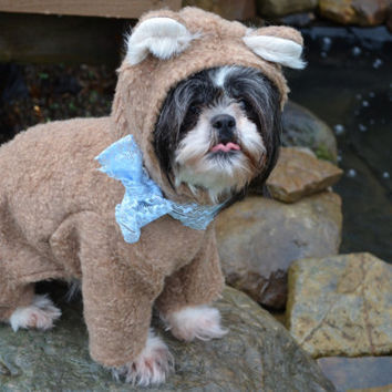 Teddy Bear or Bear Dog Halloween Costume Size Medium