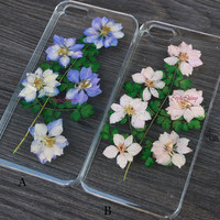 iPhone 6 case, natural daisy, Real pressed flowers Phone case, iPhone 6 Plus, iPhone 5S case, iPhone 5c case, samsung s5 case Note3 case-F23
