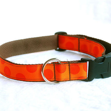 Adjustable Dog Collar in Tangerine Orange by BoutiqueVintage72