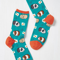 Guinea a Break! Socks | Mod Retro Vintage Socks | ModCloth.com