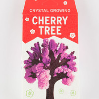 Cherry Tree Crystal Growing Kit Red One Size For Women 27560930001